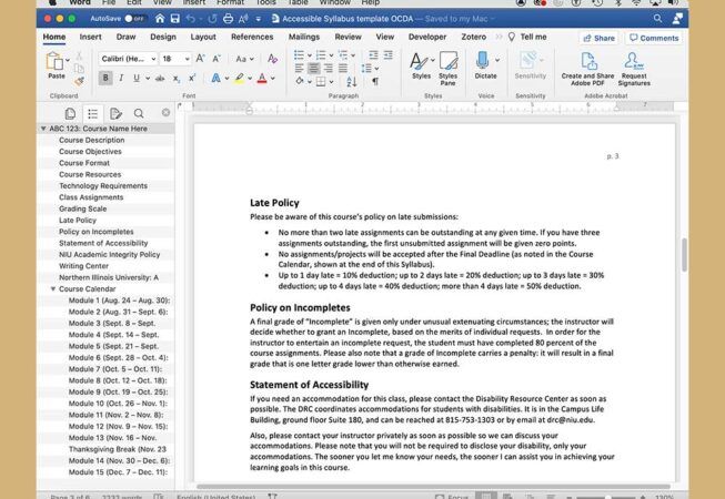 Another screen shot of Microsoft Word document, an accessible syllabus